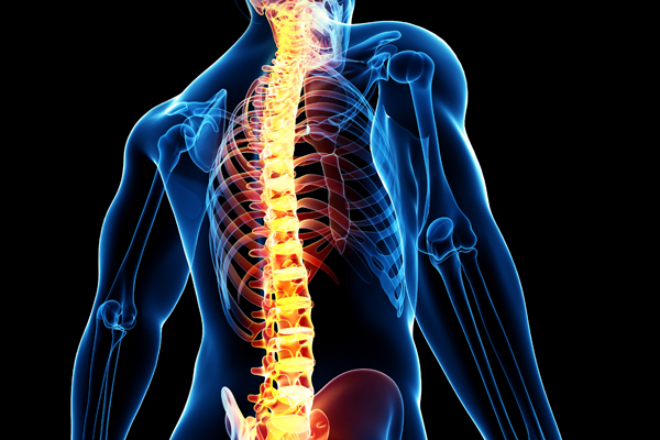 spine surgery fellowship