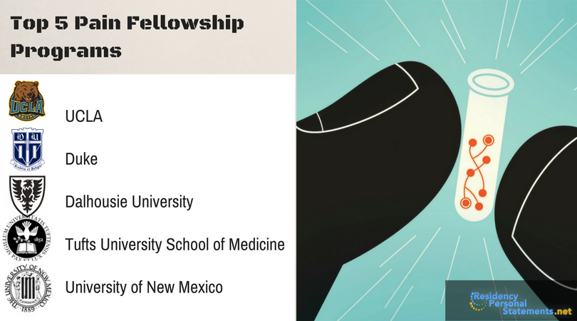 pain fellowship top programs
